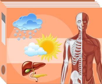 Ćwiczenia interaktywne z przyrody dla klasy 4 - Układy budujące organizm człowieka oraz Zjawiska pogodowe - Dysleksja rozwojowa